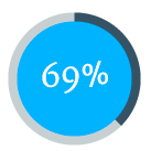 69 % icon